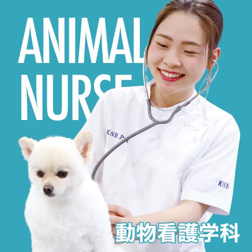 動物看護学科
