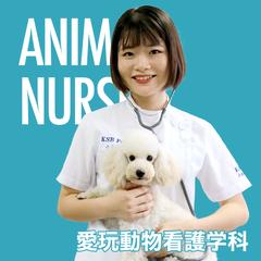 愛玩動物看護学科