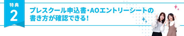 特典2、プレスクール申込書・AOエントリーシートの書き方が確認できる!